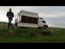 Embedded thumbnail for ŞANLIURFA posta dernegi 2019  5.etab 350 km kayseri